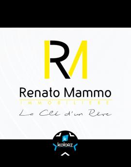 Création de logo et identité visuelle professionnelle RENATO MAMMO IMMOBILIERE